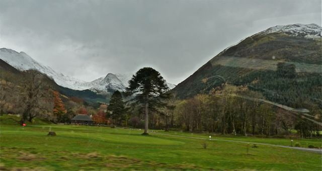 Gloomy-Highland-morning-with-the-first-snow-on-th